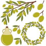 Olives réglées Photographie stock libre de droits