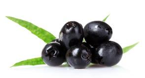 Olives savoureuses Images stock