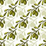 Olives seamless pattern Vector olive branch background. Hand drawn. Packaging design or kitchen pattern. Stock Images