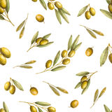 Olives seamless pattern Stock Images