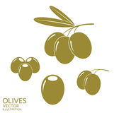 Olives. Set Stock Photography