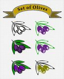 Olives. Set of vector olives for a logo or label Royalty Free Stock Photos