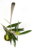 Olives in a spoon Stock Image