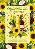 Olives, sunflowers, coconut colza extra virgin oil. Organic oil vector. Olive branch, sunflower and corn, coconut, flax seed and colza, peanut, hemp natural food royalty free illustration