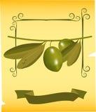 Olives sur le branchement illustration de vecteur