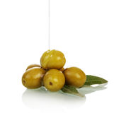Olives on twig Stock Images