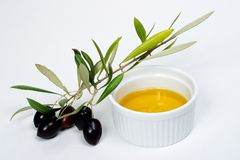 Olives twig and pure olive oil. Extra-virgin olive oil and black olives branch on white paper Stock Images