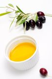 Olives twig and pure olive oil Royalty Free Stock Images