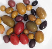 Olives Varieties Royalty Free Stock Image