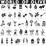 Olives vector icons. On a white background with a shadow Royalty Free Stock Images