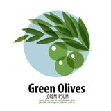 Olives vector logo design template. harvest or Royalty Free Stock Images