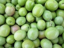 Olivfrukter Arkivfoto