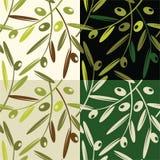 Olivgrön vektor illustrationer
