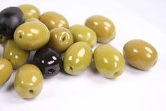 olivgrön Royaltyfri Fotografi