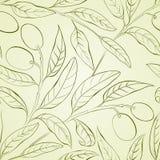 Olivgrön bakgrund. Arkivfoto