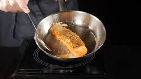 olivgrön för olja för kök för kockbegreppsmat ny över hällande restaurangsallad Panna-stekt lax, forell Sida för laxfiléhud ner p stock video