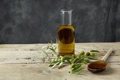 Olivgrön filial och olivolja Royaltyfria Bilder
