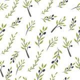 Olivgrön frunchuppsättning Digital illustration Arkivbild