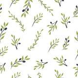 Olivgrön frunchuppsättning Digital illustration Arkivbilder