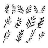 Olivgrön frunchuppsättning Digital illustration Royaltyfri Foto