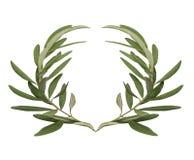 Olivgrön krans - belöningen för vinnarna av olympiska spel i forntida Grekland Arkivfoton