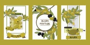 Olivgrön vektoroliveoilflaska med jungfrulig olja och naturliga olivaceous ingredienser för vegetarisk matbakgrund vektor illustrationer