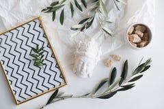 Olivgröna filialer och keramisk dekor fotografering för bildbyråer