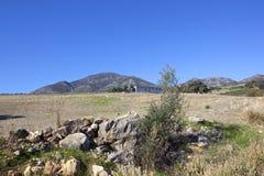 Olivgrüne drückende Fabrik in Andalusien Lizenzfreies Stockbild