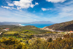 Olivgrüne Felder nähern sich dem Mediterranian Stockfotografie