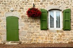 Olivgrüne grüne Farbe und Blumen der Fassade Lizenzfreie Stockbilder