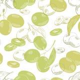 Olivgrüne grafische Farbnahtloser Musterhintergrundskizzen-Illustrationsvektor Stockfotografie