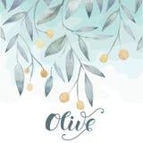 Olivgrüne Hand gezeichneter Hintergrund Stockbild