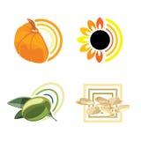 Olivgrüne Seasame Kürbis-Sonnenblume Lizenzfreies Stockfoto