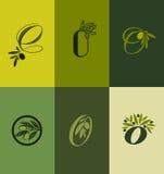 Olivgrüner Baumast. Satz Aufkleber. Vektorillustration Stockfotos