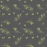 Olivgrünes dunkles nahtloses Vektormuster Lizenzfreie Stockfotografie