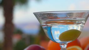 Olivgr?na nedg?ngar in i ett exponeringsglas med martini p? en bakgrund av citrusfrukter arkivfilmer