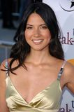 Olivia munn. At the World Premiere of The Break-Up. Mann Village Westwood, Westwood, CA. 05-22-06 Royalty Free Stock Photography