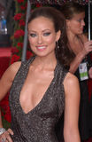 Olivia Wilde Stock Photo