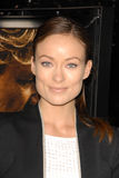 Olivia Wilde Royalty Free Stock Images