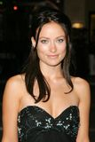 Olivia Wilde. At the Premiere of 'Into The Blue'. Mann Village, Westwood, CA. 09-21-05 royalty free stock image