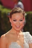 Olivia Wilde Royalty Free Stock Photo