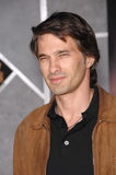 Olivier Martinez Royalty Free Stock Images