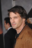 Olivier Martinez Stock Photo
