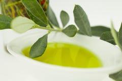 Olivoljaflaska och bunkeplatta med den olivgröna filialen Jungfrulig olivolja Naturlig olivolja, sund mat Royaltyfri Foto