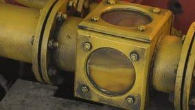 Olivoljaspring från ett stålrör in i en metallkaraff inom ett olje- maler lager videofilmer