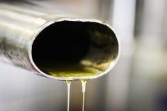 Olivoljastekflott ut ur en press Royaltyfri Foto