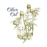 Olivoljavektorn skissar och nya gröna oliv royaltyfri illustrationer