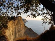 Olivträdet och klippor ovanför Loggas sätter på land i Korfu, Grekland Arkivbild
