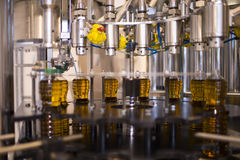 Oliwa z oliwek fabryka, Oliwna produkcja Fotografia Stock
