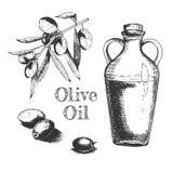 Oliwa z oliwek i fruitage skład obraz royalty free